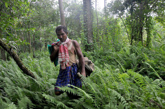 Jadav Payeng &#8211; The man who planted a forest, all by himself