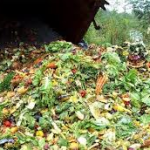 kitchen waste to energy